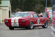 lores-1966-Shelby-GT350-Rear
